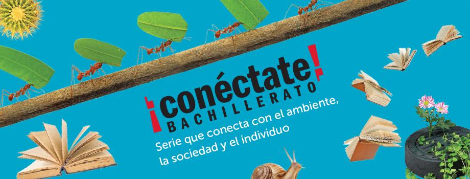 Banner_conecta